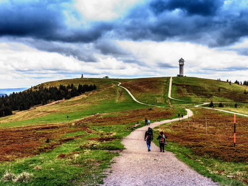 Feldberg in the Black Forest: day trip from the carathotel Basel